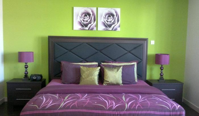 Две розы на стене